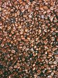˜ di tempo del caffè•© del  del ðŸ del  del ï¸ Immagini Stock