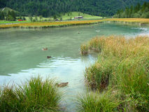 """Pillersee"" Photo libre de droits"