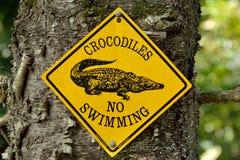 'Crocodiles Żadny Swimming' znak na drzewie zdjęcie stock