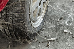 80�s tire among cobwebs Royalty Free Stock Image