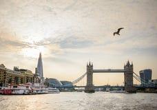 € «19-ое августа Лондона, Великобритании: Символ моста башни Lond Стоковое Изображение RF