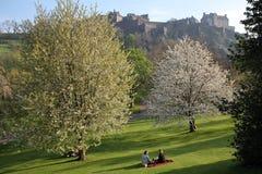"""€ de EDIMBURGO, ESCOCIA """"8 de mayo de 2016 Â: Opinión el castillo y príncipes Street Gardens de Edimburgo con colores de la prim Foto de archivo"""