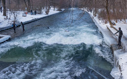 """€ di MONACO DI BAVIERA """"28 gennaio: Una cima di guida del surfista di un'onda sul fiume Isar immagini stock libere da diritti"""