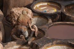 "€ FEZ, MAROKKO ""am 20. Februar 2017: Bemannen Sie das Arbeiten an der berühmten Chouara-Gerberei im Medina von Fez, Marokko Lizenzfreie Stockbilder"