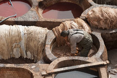 "€ FEZ, MAROKKO ""am 20. Februar 2017: Bemannen Sie das Arbeiten an der berühmten Chouara-Gerberei im Medina von Fez, Marokko Stockbild"