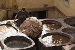 "€ FEZ, MAROKKO ""am 20. Februar 2017: Bemannen Sie das Arbeiten an der berühmten Chouara-Gerberei im Medina von Fez, Marokko Lizenzfreies Stockbild"
