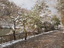 Â雪在城市公园 库存图片