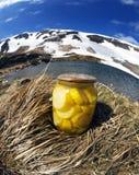 Â-Bank mit Zucchini in den wilden Bergen Lizenzfreie Stockbilder
