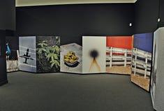 19º exposition Fotopres 2015 Photos stock