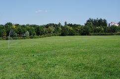 Â-gräsvall och blå himmel Arkivbild