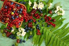 Lasowe i ogrodowe jagody na starym drewnianym stole Fotografia Royalty Free