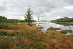 «Marais du Nord » έλη Στοκ εικόνες με δικαίωμα ελεύθερης χρήσης