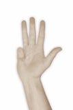 quatro do número 4 da mão Fotografia de Stock Royalty Free