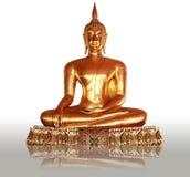 Wat Pho, Bangkok, Tailandia della statua del Buddha dell'oro Fotografie Stock Libere da Diritti