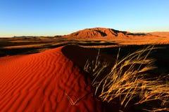 Â Wolwedans da margem NR de Namib Fotos de Stock Royalty Free