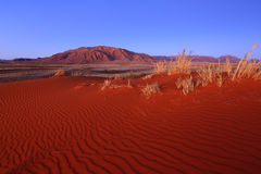 Â Wolwedans du couche-point NR de Namib photographie stock libre de droits