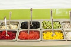 âFrozen los desmoches del yogur Foto de archivo libre de regalías