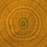 Âge d'arbre illustration libre de droits