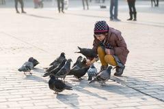Âge de fille 6-8 ans alimentant des pigeons à la place principale dans la vieille ville Photographie stock