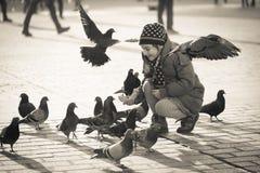 Âge de fille 6-8 ans alimentant des pigeons à la place principale dans la vieille ville Photographie stock libre de droits