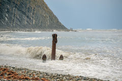 Âncora velha na praia Foto de Stock