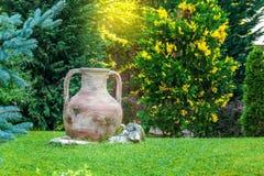 Ânfora antiga no jardim Fotografia de Stock Royalty Free