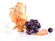 Ânfora bonita do produto de cerâmica com o galho e a uva da videira Fotografia de Stock