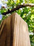 Ângulo da madeira serrada imagem de stock royalty free