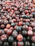 Ângulo largo do montão de ameixas vermelhas e roxas orgânicas frescas Fotografia de Stock