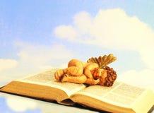 Ângulo que descansa em uma Bíblia Foto de Stock Royalty Free