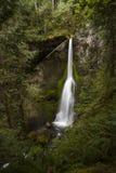 Ângulo ultra largo de quedas de Marymere, parque nacional olímpico Imagem de Stock Royalty Free