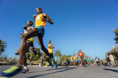 Ângulo ultra largo dos corredores de maratona Imagens de Stock