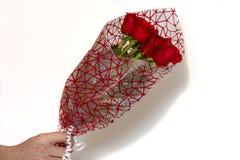 Übergeben Sie das Halten des Blumenstraußes der roten Rosen über weißem Hintergrund stockfotos