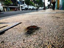 Überwachen Sie Ihren Jobstepp auf Fußgängerweg müssen wir von dieser Art des Hindernisses auf auch achtgeben, die sicher unsere F stockbild