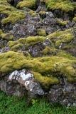 Þingvellir, όπου τα ευρωπαϊκά και αμερικανικά πιάτα συναντιούνται Εθνικό πάρκο Thingvellir κοντά στο Ρέικιαβικ στοκ εικόνες με δικαίωμα ελεύθερης χρήσης