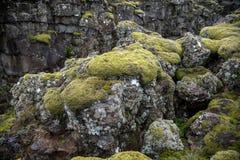 Þingvellir, όπου τα ευρωπαϊκά και αμερικανικά πιάτα συναντιούνται στοκ εικόνα