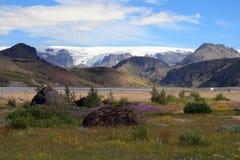 Þà ³rsmörk i Island med bergsikt Arkivfoto