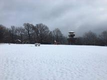 Ã-‰ gervölgy im Winter nahe Ã-‰ gertetÅ ` stockbild