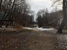 Ã-‰ gervölgy im Winter nahe Ã-‰ gertetÅ ` lizenzfreie stockbilder