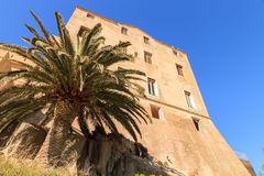 École de musique in the citadel at Calvi in Corsica. The exterior of the École de musique in the citadel at Calvi with a plam tree in the foregroundset Stock Image