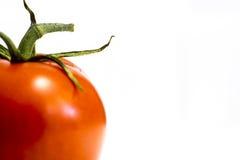 çlose de tomate de vigne Photos stock