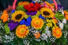 不同的花五颜六色的花束的特写镜头  免版税库存照片