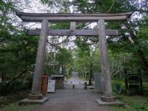 上部Togakushi-Jinja的巨大的木鸟居门的看法,日本 免版税库存图片