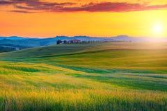 与五颜六色的日落和粮田,意大利的令人惊讶的托斯卡纳风景 库存照片