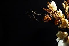 与干燥花的木兰 库存照片