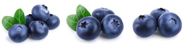 与在白色背景特写镜头隔绝的叶子的新鲜的蓝莓 集合或汇集 库存图片