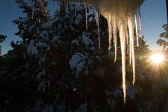 与垂悬从屋顶的冰的阳光 库存照片