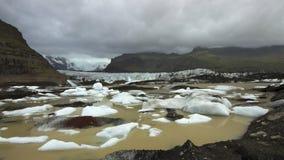 与冰山盐水湖的Svinafelljokull冰川 免版税图库摄影