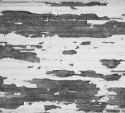 与剥白色油漆和风化的老金属表面 免版税库存照片