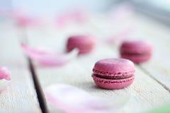 与桃红色花和蛋白杏仁饼干蛋糕的浪漫精美构成 免版税库存照片